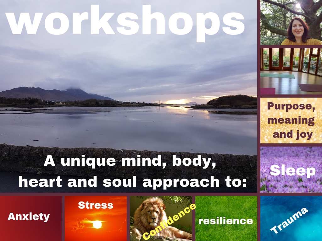 workshops for anxiety stress confidence resilience trauma sleep and purpose meaning and joy