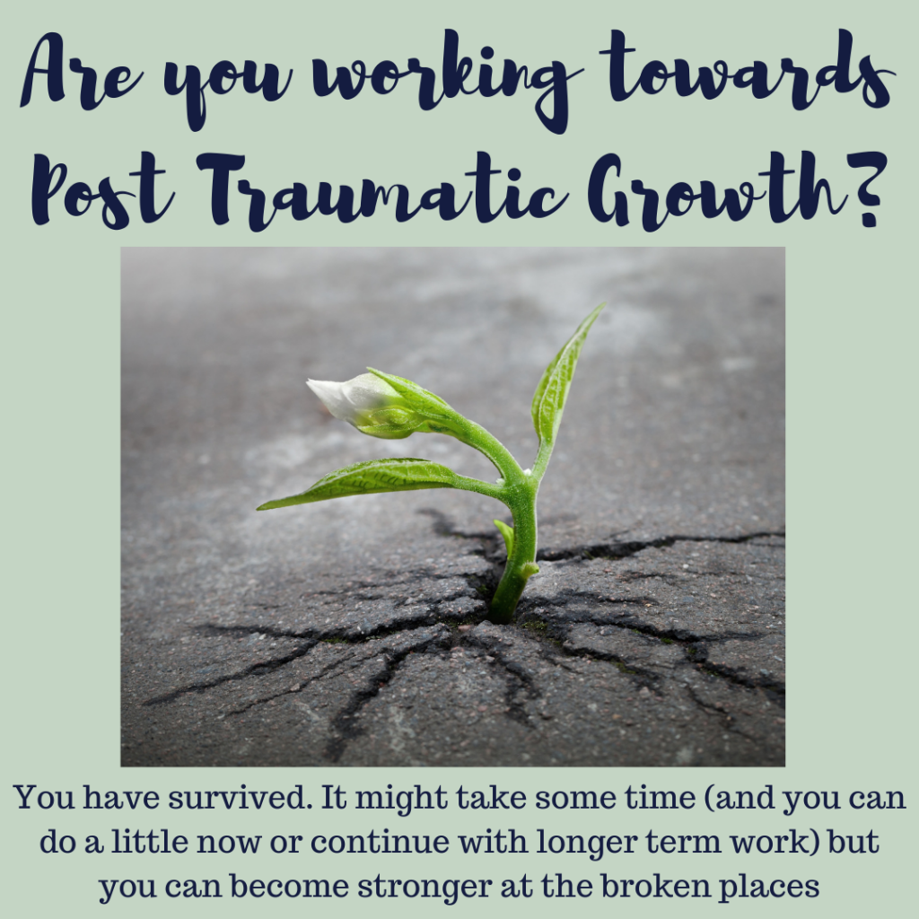 heal your trauma and work towards post traumatic growth Feel Better Every Day with Eve Menezes Cunnignham